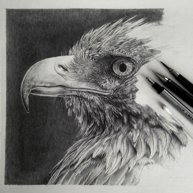 Hyperrealistic_Pencil_Drawings_By_Monica_Lee_2014_07