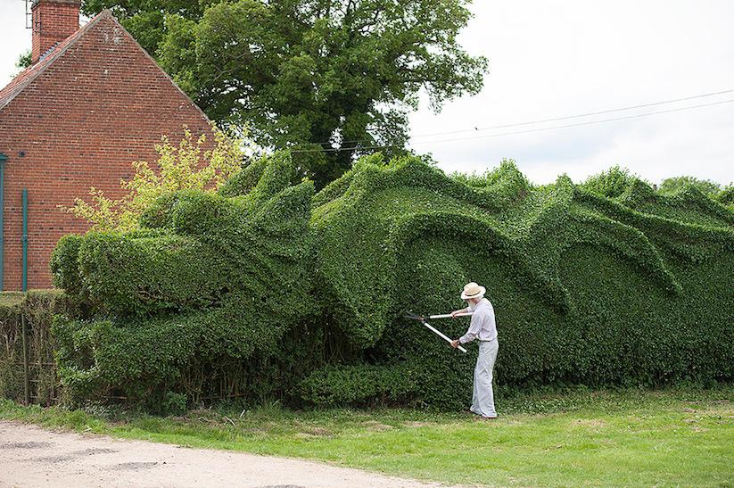 JohnBrooker_hedge_dragon_04