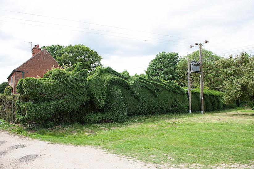 JohnBrooker_hedge_dragon_06