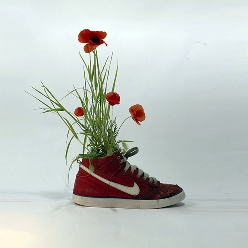 Just_Grow_It_Les_Sneakers_Vegetales_by_French_Artist_Monsieur_Plant_2014_08