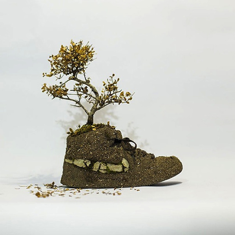 Just_Grow_It_Les_Sneakers_Vegetales_by_French_Artist_Monsieur_Plant_2014_09