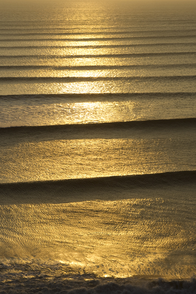 Lines Of Gold