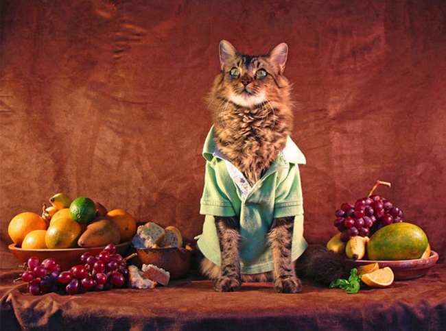 Lorenzo_the_Cat_by_Joann_Biondi_2014_10