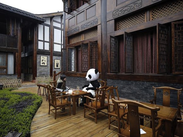 The Haoduo Panda Hotel_3