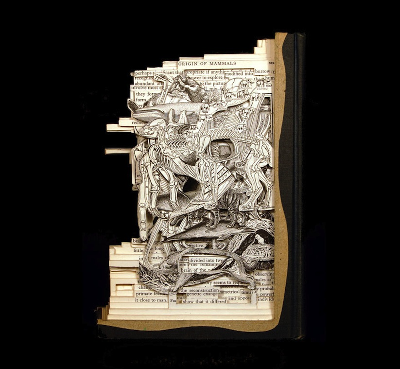 The_Book_Surgeon_Incredible_Book_Sculptures_by_Brian_Dettmer_2014_08