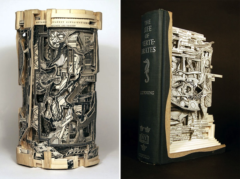 The_Book_Surgeon_Incredible_Book_Sculptures_by_Brian_Dettmer_2014_09