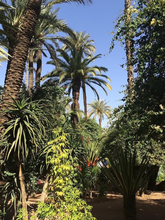 WHUDAT_Marrakech_12