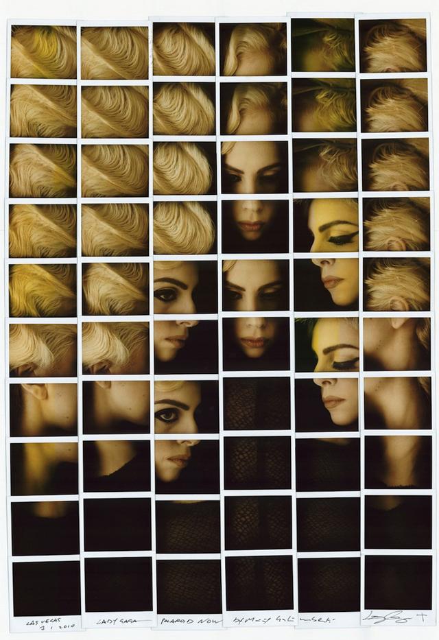 WHUDAT_MaurizioGalimberti_Gaga