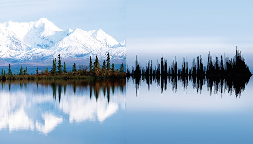 anna-marinenko-nature-sound-waves_01