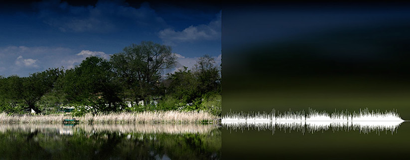 anna-marinenko-nature-sound-waves_05