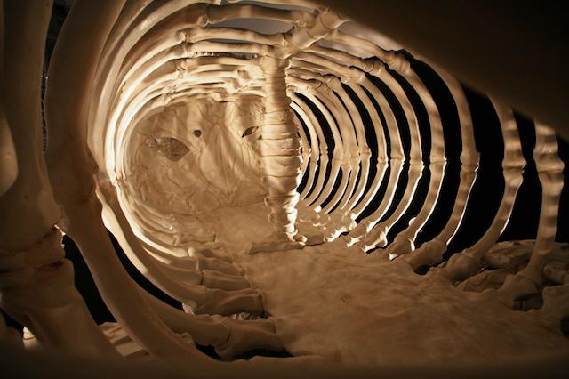 bone-vehicles-by-jitish-kallat_05