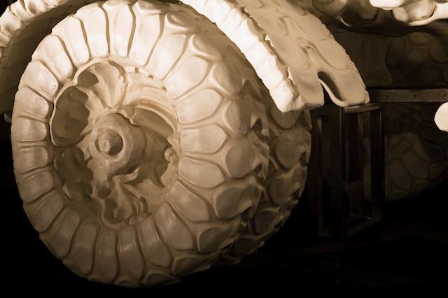 bone-vehicles-by-jitish-kallat_06