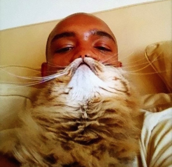 cat-beards_02