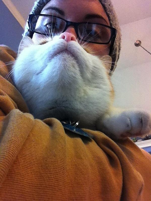 cat-beards_03