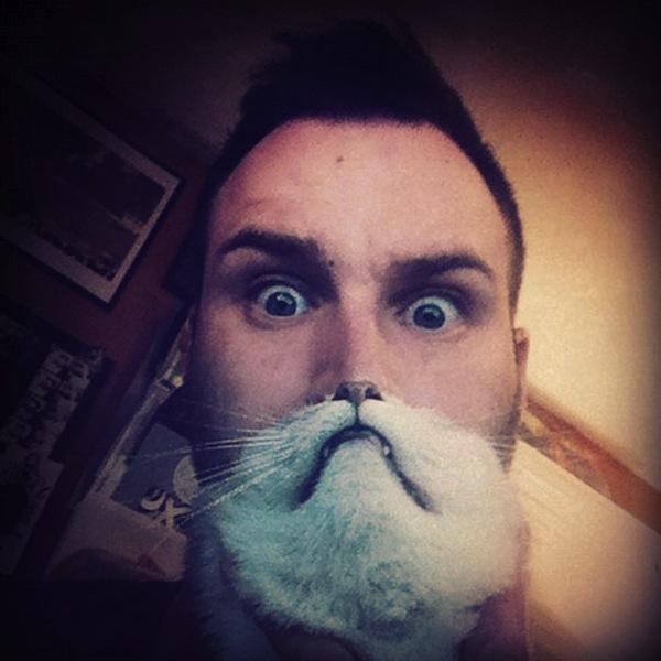 cat-beards_05