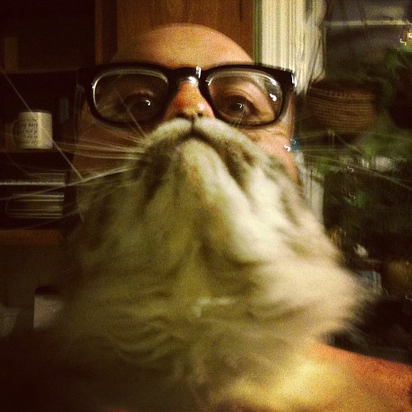 cat-beards_06