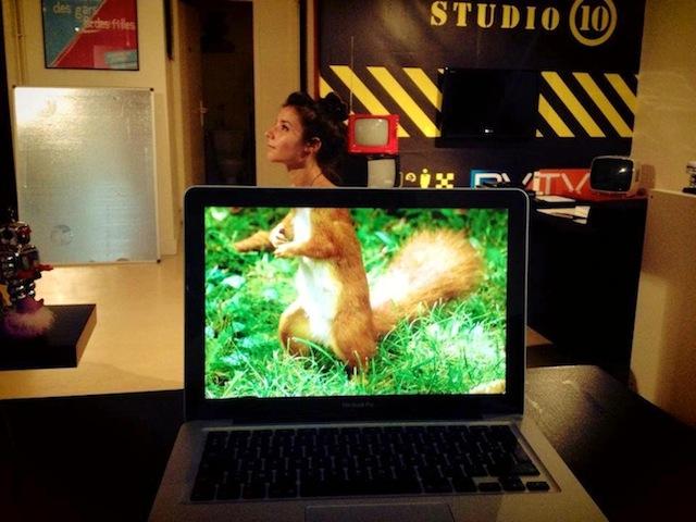 desk_safari_meme_06