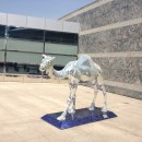 Vor dem Hotel - Kamel im Discokugel-Steez