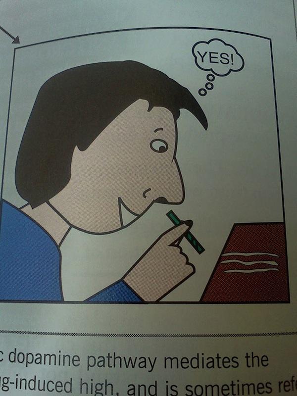 funny_textbook_fails_16