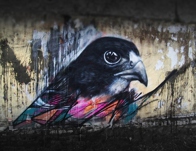 graffiti-birds-street-art-L7m-09