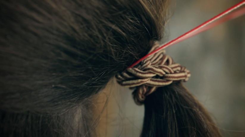 hair_music_violin_02