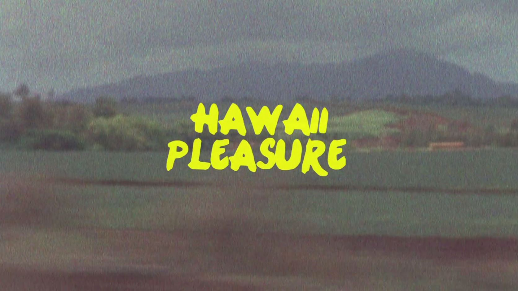 Hawaii Pleasure