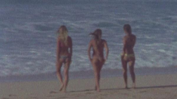 hawaii pleasure 3