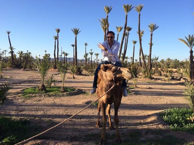marrakech_sofitel_WHUDAT_16