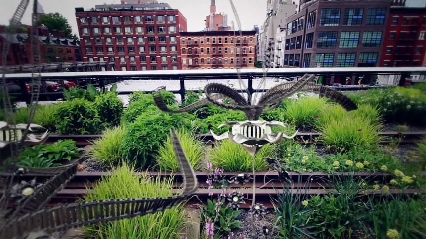 new_york_biotopes_05