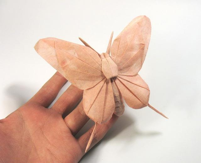 origami_nguyen-hung_08