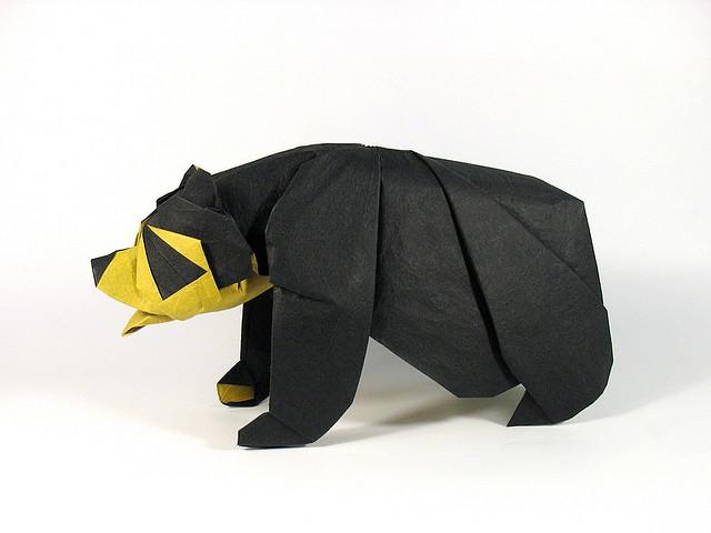 origami_nguyen-hung_10