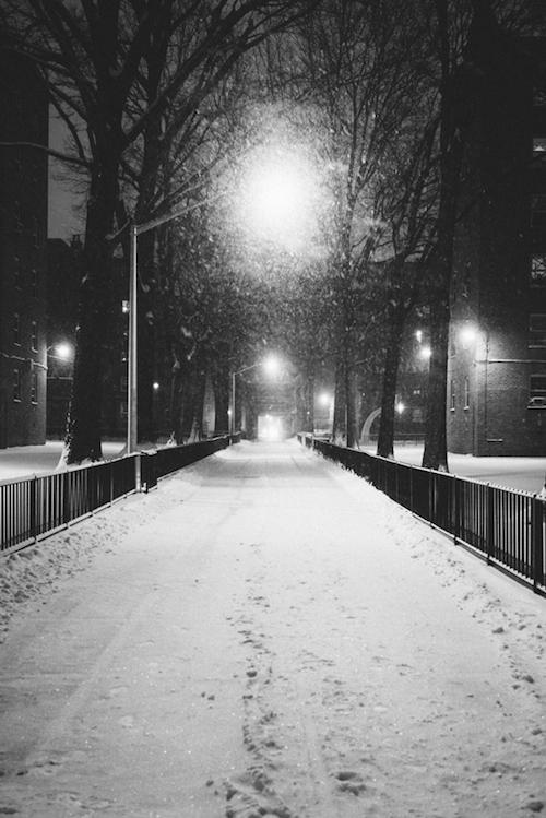 snow-storm-007