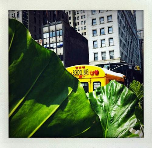 stefan-falke-newyork-iphone-09