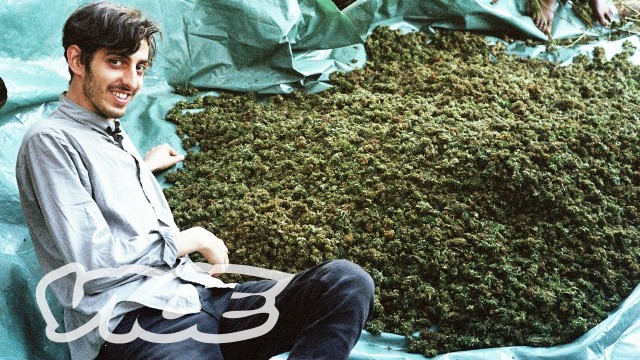 swaziland-gold-mine-of-marijuana-cover