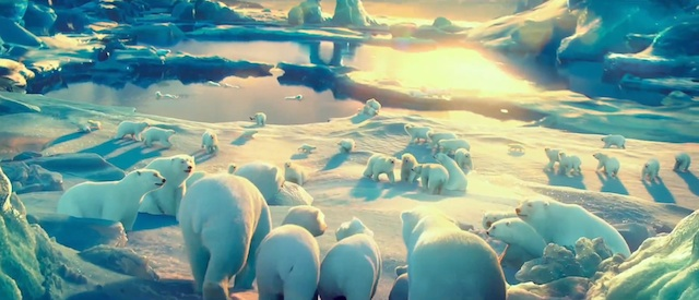 the_polar_bears_02