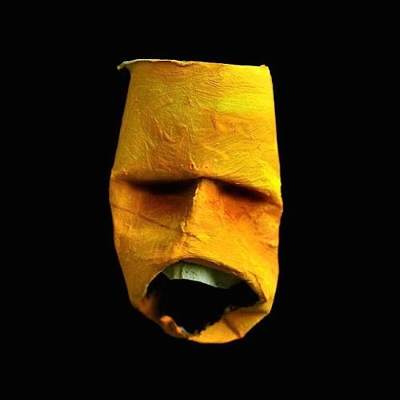 toilet_paper_rolls_faces_09