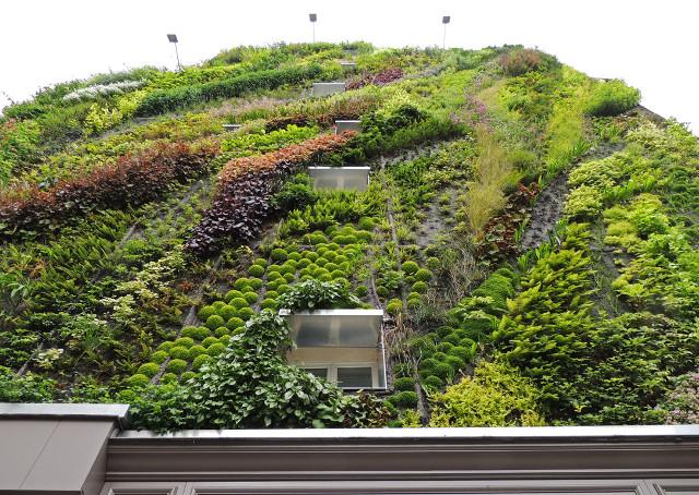 vertical_garden_10