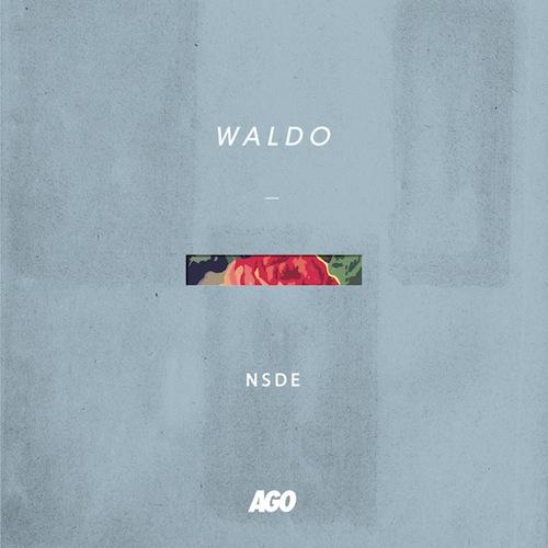 waldo_nsde_cvr
